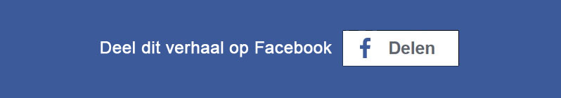 Button - Deel de verhaal van Aram op Facebook