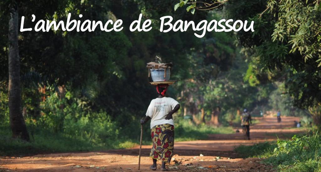 La vie à Bangassou